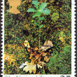 "UNITED KINGDOM - CIRCA 1995: A stamp printed in United Kingdom from the ""Centenary of The National Trust"" issue shows Oak seedling, circa 1995. — Stock Photo"