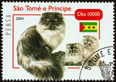 "SAO TOME AND PRINCIPE - CIRCA 2004: A stamp printed in Sao Tome and Principe from the ""Cats "" issue shows Persian, circa 2004. — Stock Photo"