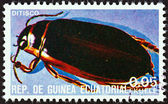 "EQUATORIAL GUINEA - CIRCA 1978: A stamp printed in Equatorial Guinea from the ""Insects "" issue shows Dytiscus, circa 1978. — Stock Photo"