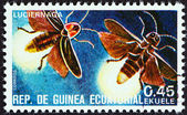 """EQUATORIAL GUINEA - CIRCA 1978: A stamp printed in Equatorial Guinea from the """"Insects """" issue shows Lampyridae, circa 1978. — Stock Photo"""