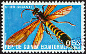 "EQUATORIAL GUINEA - CIRCA 1978: A stamp printed in Equatorial Guinea from the ""Insects "" issue shows Sirex gigante, circa 1978. — Zdjęcie stockowe"