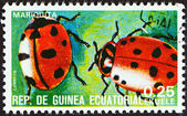 "EQUATORIAL GUINEA - CIRCA 1978: A stamp printed in Equatorial Guinea from the ""Insects "" issue shows Coccinellidae, circa 1978. — Stock Photo"