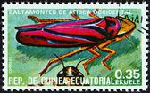 "EQUATORIAL GUINEA - CIRCA 1978: A stamp printed in Equatorial Guinea from the ""Insects "" issue shows Graphocephara coccinea, circa 1978. — Stock Photo"