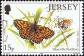 """Jersey - yaklaşık 1991: i̇ngiltere ' """"kelebek ve pervane"""" sorunu basılmış damga glanville fritillary kelebek (melitaea cinxia), 1991 gösterir. — Stok fotoğraf"""