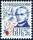 CZECHOSLOVAKIA - CIRCA 1965: A stamp printed in Czechoslovakia shows Gregor Johann Mendel (publication centenary in Brno of his study of heredity), circa 1965. — Stock Photo