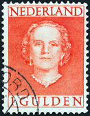 NETHERLANDS - CIRCA 1949: A stamp printed in the Netherlands shows Queen Juliana, circa 1949. — ストック写真