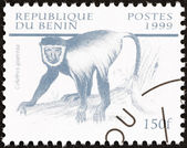 "BENIN - CIRCA 1999: A stamp printed in Benin from the ""Mammals "" issue shows Mantled guereza (Colobus guereza), circa 1999. — Stock Photo"