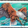 "TANZANIA - CIRCA 1994: A stamp printed in Tanzania from the ""Birds of Prey"" issue shows African fish eagle (Haliaeetus vocifer), circa 1994. — Stock Photo #47767033"