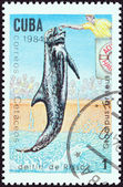 "CUBA - CIRCA 1984: A stamp printed in Cuba from the ""Whales and Dolphins "" issue shows Risso's Dolphin, circa 1984. — Foto de Stock"