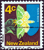 NEW ZEALAND - CIRCA 1970: A stamp printed in New Zealand shows Puriri moth, circa 1970. — Stockfoto