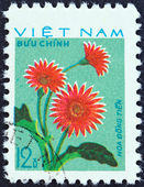 "VIETNAM - CIRCA 1977: A stamp printed in Vietnam from the ""Cultivated Flowers (1st series) "" issue shows Pink Dahlias (Hoa Dong Tien), circa 1977. — Stock Photo"