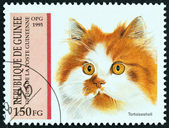 "GUINEA - CIRCA 1995: A stamp printed in Guinea from the ""Cats "" issue shows Tortoiseshell, circa 1995. — Stock Photo"