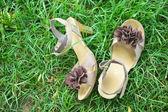 Zapatos en pasto — Foto de Stock