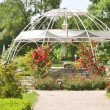 Metal framed pergola with roses — Stock Photo