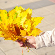 Many autumn leaves in hand — Stock Photo