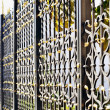 Ornamental metal fence — Stock Photo