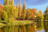 Herbstliche landschaft am see — Stockfoto