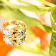 Stok fotoğraf: Gold ring with enamel