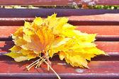 秋の葉の花束. — ストック写真