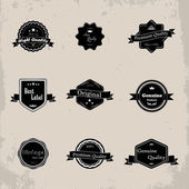 Collection of Premium Quality and Guarantee Labels with retro design — Stock Vector