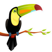 Illustration of a cute toucan sitting on a branch with leaves — Stock Vector