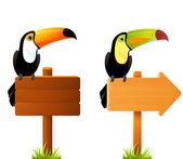 Colorful toucan birds sitting on a blank wooden sign board — Stock Vector