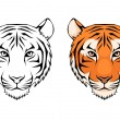 Stock Vector: Line illustration of tiger head