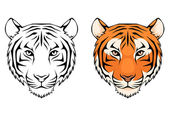 Line illustration of a tiger head — Stock Vector