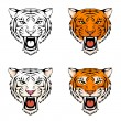Line illustration of a roaring tiger - Stock Vector