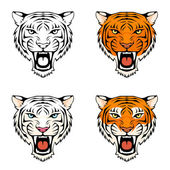 Line illustration of a roaring tiger — Stock Vector