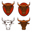 Line illustration of a bull head — Stock Vector