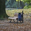 Autumn, bench — Stock Photo