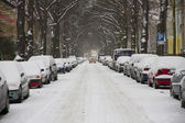 Road, winter , snow — Stock Photo