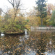 Berlin. Lankwitz. Autumn. Germamy — Stock Photo