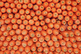 Aligned carrots background — Stock Photo