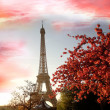 Eiffel Tower in spring time, Paris, France — Stock Photo #16799705