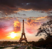 Eiffel Tower in spring time, Paris, France — Stockfoto
