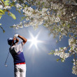 Man playing golf — Stock Photo #16830493