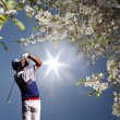 man golfen — Stockfoto #16830493