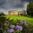 Restormel Castle, Lostwithiel Cornwall England — Stock Photo