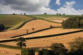 English landscapes — Stock Photo