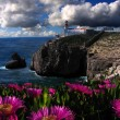 Amazing Algarve in spring time, Portugal - Stock Photo