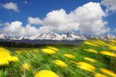 Tatry w czasie wiosny, słowacja — Zdjęcie stockowe