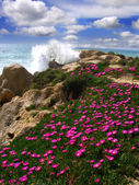 Algarve, Portugal with beautiful coast during a spring time — Stock Photo