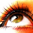 Beautiful woman eye - Stock Photo