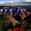 Gourgeous autumn in Grand Canyon, Arizona, USA - Stock Photo