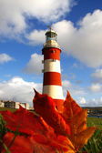 Plymouth Lighthouse with autumn leaves in England — Stock Photo