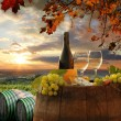 White wine with barrel on vineyard in Chianti, Tuscany, Italy — Stock Photo