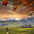 Chianti vineyard landscape in Tuscany, Italy — Stock Photo #30487343