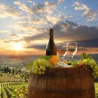 Stock Photo: White wine with barrel on vineyard in Chianti, Tuscany, Italy